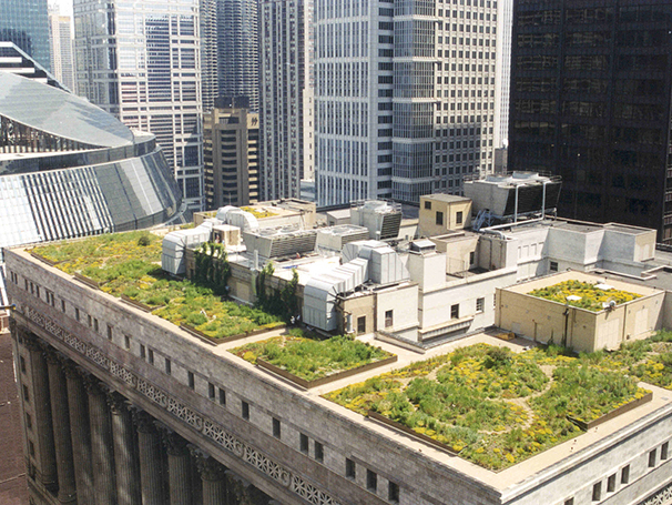 the most visible example of the incorporation of green roof technologies in North America